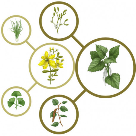 Ceai plante Anti-stress, 60116, vrac